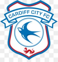 kisspng-cardiff-city-stadium-cardiff-city-f-c-efl-champio-fulham-f-c-5abdee28ba0aa9.115737161522396712762